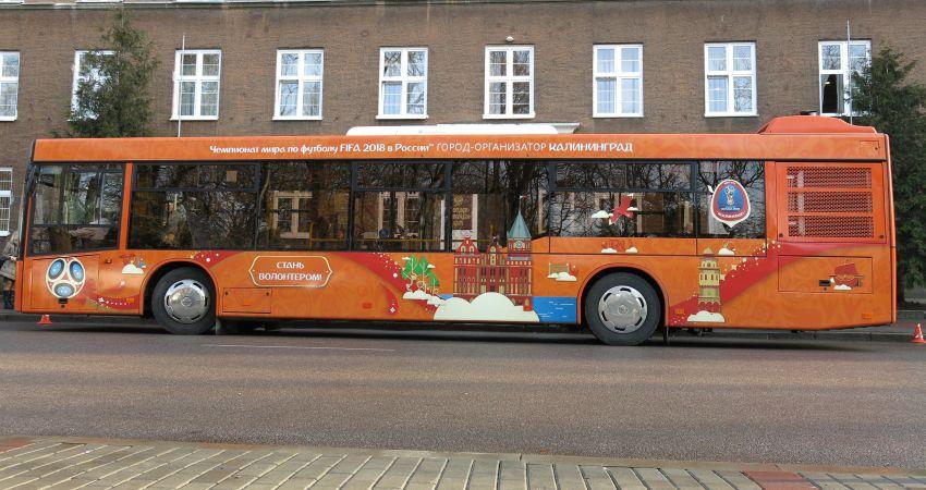 Калининградский автобус к ЧМ-2018