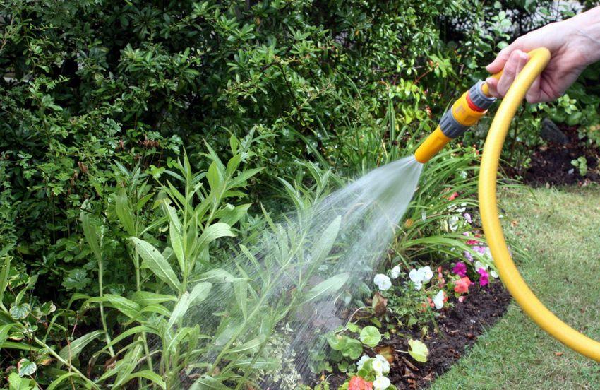 садовый шланг для полива - что подарить тёще и тестю на Новый год 2018 недорого