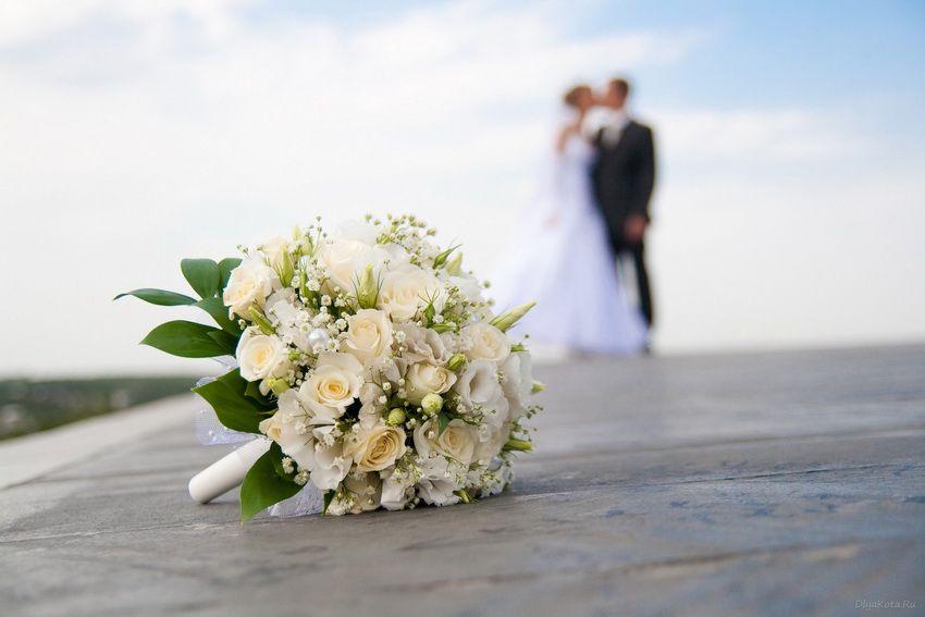 свадьба - любовный гороскоп на 2018 год для Скорпионов-женщин и скорпионов-мужчин